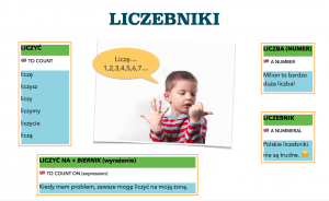 liczebniki polskie polish numerals learn polish